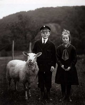 Children and sheep